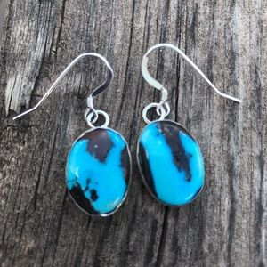 Jewelry - Navajo Golden Hills Turquoise Sterling Earrings
